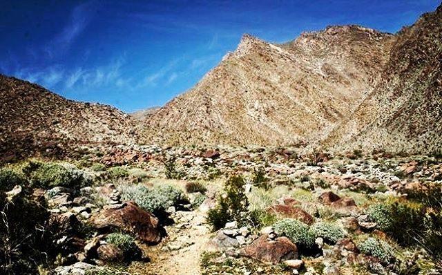 Beautiful family hike at AnzaBorrego Palm Canyon Continue reading rarr