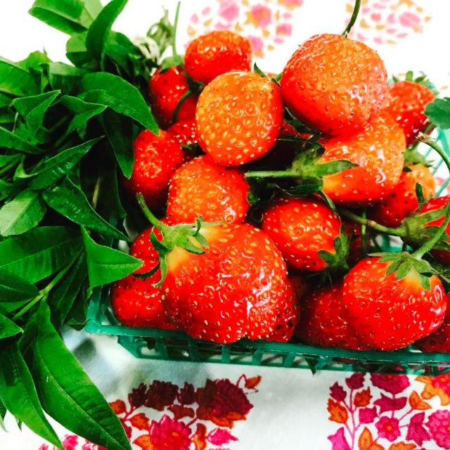 Fresh French Strawberries and Lemon Verbena  Continue reading rarr