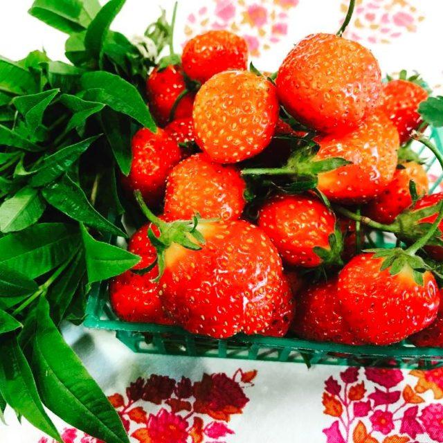Fresh French Strawberries and Lemon Verbena  Continue reading rarr